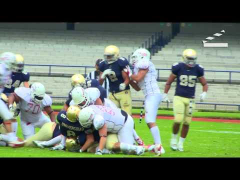 Passion Films - Musical Golpes 2013 - Football Best Hits