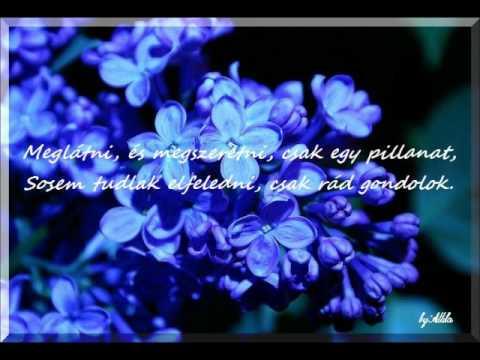 Kék az orgona virága.wmv