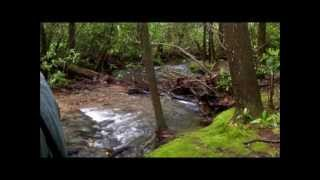 Appalachian Trail - Blood Mountain via Lake Winfield Scott - GA