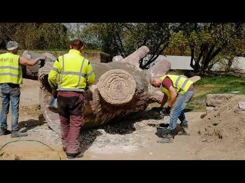 artificial-tree-trunk-made-of-concrete---artificial-rocks-skalisty-orientarium