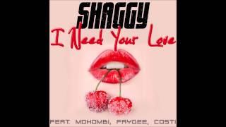 Shaggy Feat. Mohombi Faydee Costi I need your love Afrojack W bootleg.mp3