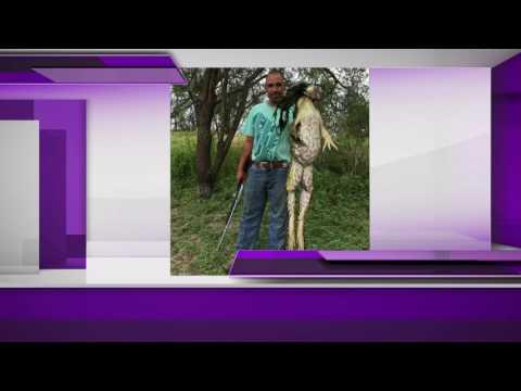 South Texas man catches massive bullfrog