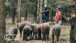 Raising Livestock With Climate and Community in Mind | Fed Up (Ep. 2)