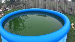 Лира какой почему в бассейне мутная вода цена квартиры