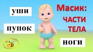Учим части тела с Масиком. Масик: части тела. Развивающий мультфильм для детей