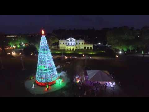 Lighting of the Christmas tree in Suriname onafhankelijkheidsplein
