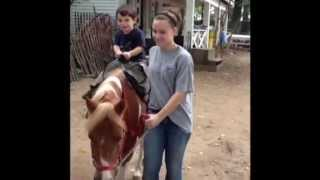 Xander rides the ponies and goes to the petting zoo