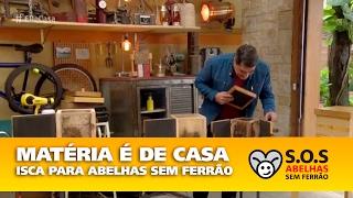 Gambar cover Saiba como criar abelhas sem ferrão e ter mel fresquinho em casa -  SOS Abelhas Sem Ferrão
