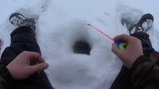 Зимняя рыбалка на окуня Приготовили Уху Ёрш Окунь