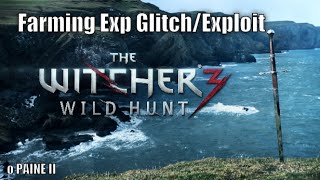 The Witcher 3 Wild Hunt | Farming Exp Glitch / Exploit - Constant Spawns Drowners