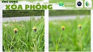 Ứng dụng xóa phông trên điện thoại: Tadaa, AfterFocus, Snapseed quốc dân