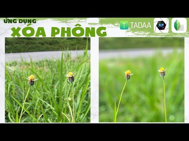?ng d?ng xóa phông trên ?i?n tho?i Android và iOS: Tadaa, AfterFocus, Snapseed qu?c dân