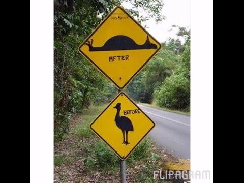 Best road sign fails