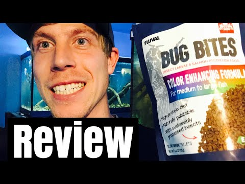 Review: Bug Bites Color Enhancing Food