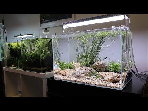 River Bottom Aquascape Tutorial - Easy Aquascape added to the Aquarium Gardens Showroom