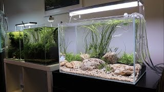 River Bottom Aquascape Tutorial - Easy Aquascape added to the Aquarium Gardens Showroom
