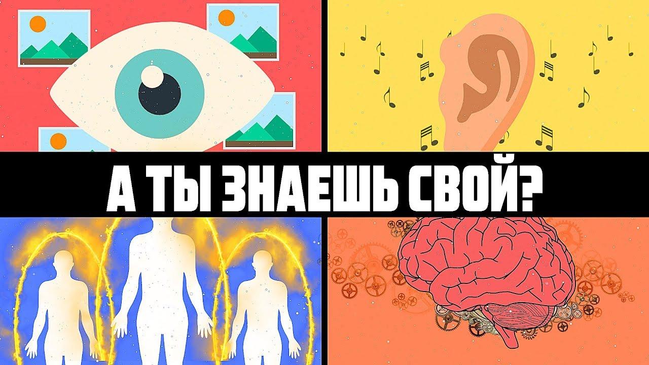 4 типа восприятия человека