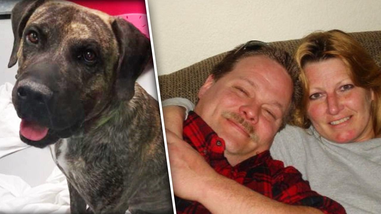 las-vegas-woman-killed-by-dog-days-after-adopting-it-from-shelter