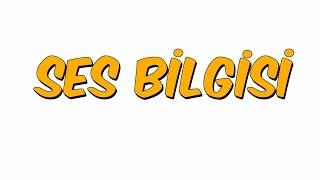 SES BİLGİSİ | YGS KAMPI '16 Türkçe #8
