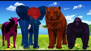 Colors Wild Animals Cartoons Finger Family Songs Nursery Rhymes for Children Kids Toddlers