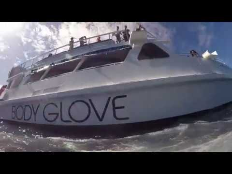 Body Glove Snorkel Tour: Kona, Hawaii