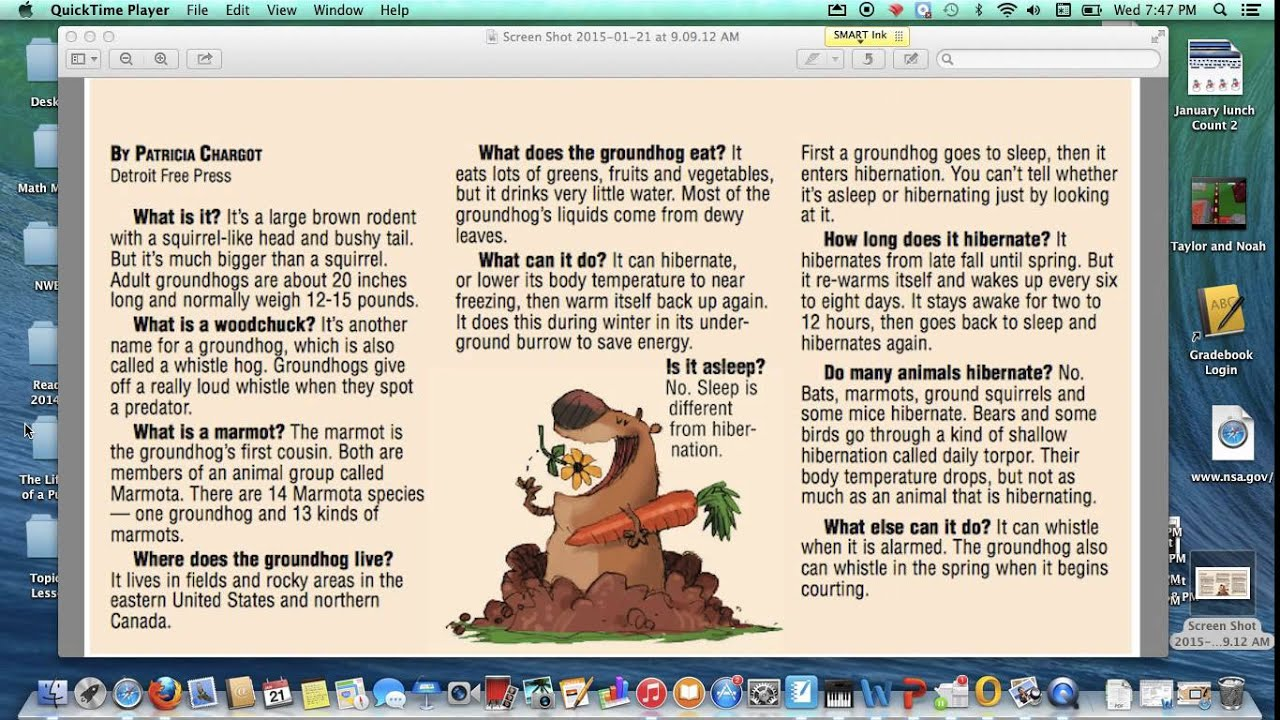 groundhog facts popplet part 1 youtube