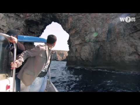 What2doin · Menorca Boats · Menorca Activities