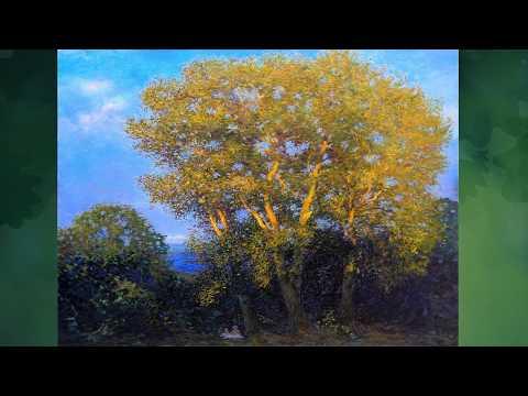 Вопрос: Какое дерево ещё называют Тополь трясущийся , что о нём известно?
