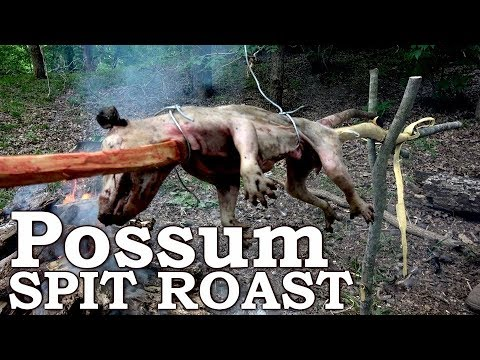 Catch and Cook OPOSSUM Spit ROAST! Ep06 | 100% WILD Food SURVIVAL Challenge!