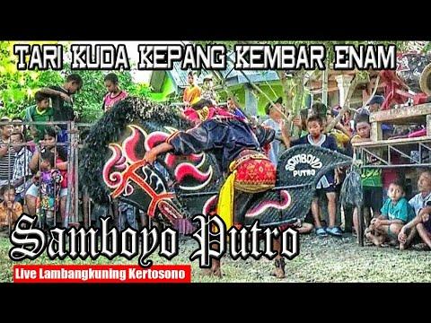 Kuda Kepang Enam Samboyo Putro Super Pegon Indonesia Live Petilasan Gajah Mada Lambangkuning