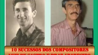 Baixar 10 Sucessos dos compositores Luiz de Castro e Braz Aparecido