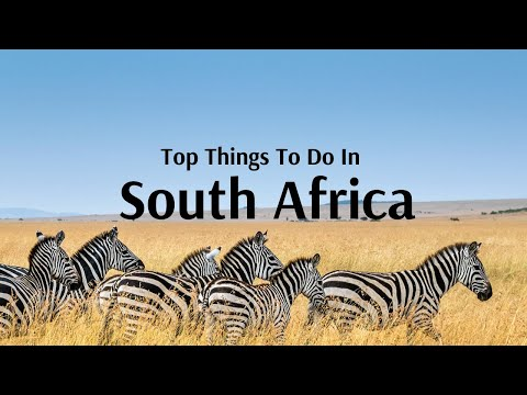 Top Things To Do & Places To Visit in South Africa - Flamingo Travels