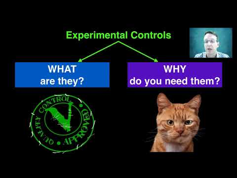 Controlled Variables and Experimental Controls