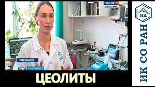 Новосибирские ученые разработали катализаторы на основе цеолита