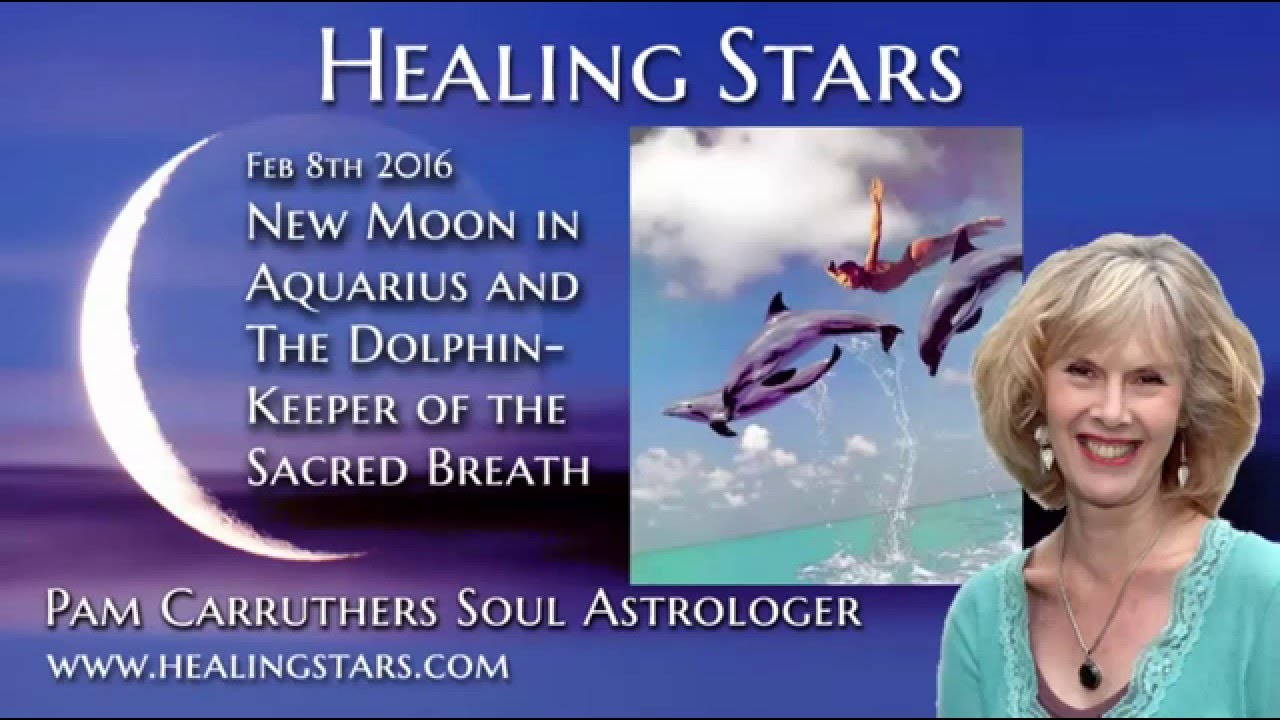 Aquarius New Moon and The Dolphin - Healing Stars