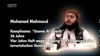 Die Hintermänner der Koranverteilung
