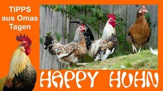 Happy Huhn Folge 23: Tipps zur Hühnerhaltung aus Omas Zeiten, Was Großmutter noch über Hühner wusste