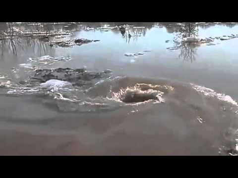 Her Şeyi İçine Çekip Gölü Kuruttu!