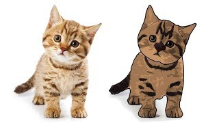 Cartoon Effect on cat Portrait |  Filter Effect on cat portrait | Photoshop Tutorial