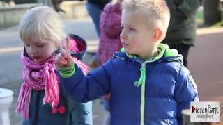 Poep & ZOO 2018 | Voorjaarsvakantie in DierenPark Amersfoort