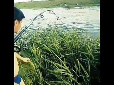 озера и рыбалка в астане