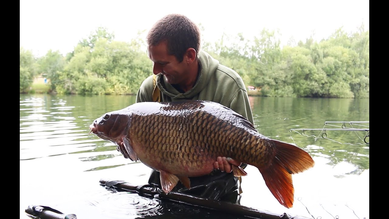 The ronnie rig in action youtube the ronnie rig in action gardner tackle tv carp fishing pooptronica Images
