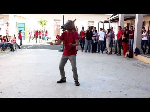 Harlem Shake Añasco Puerto Rico