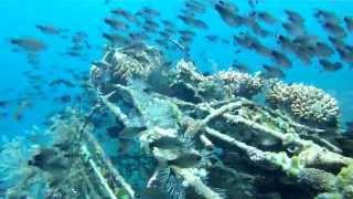 bali-dive-map Best Dive Spots Bali
