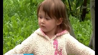 ГТРК Белгород. События недели от 21 августа - Куда потратить материнский капитал