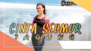 Lagu Dangdut    CINTA SEUMUR JAGUNG - Acak Keban ft Edi Keban    Remix Terbaru 2021