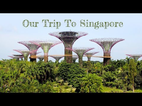 Top Things To Do In Singapore - 3 Day Travel Vlog