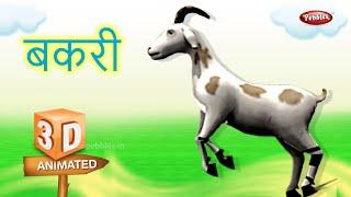 Gosat Marathi