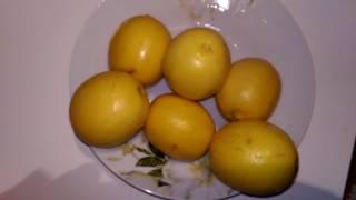 Лимон с мёдом - продукт для здоровья