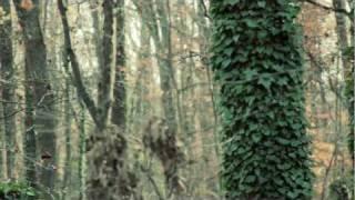 Official Music Video - Pumped Up Kicks (Rudeboy Remix)